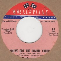 You've Got The Loving Touch / Wanna Go Home