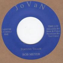 Fortune Teller / Whip It On Me