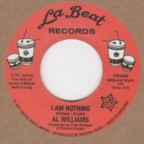 I Am Nothing / Instrumental