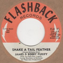 Shake A Tail Feather