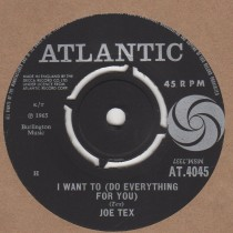 I Want To (Do Everything For You)